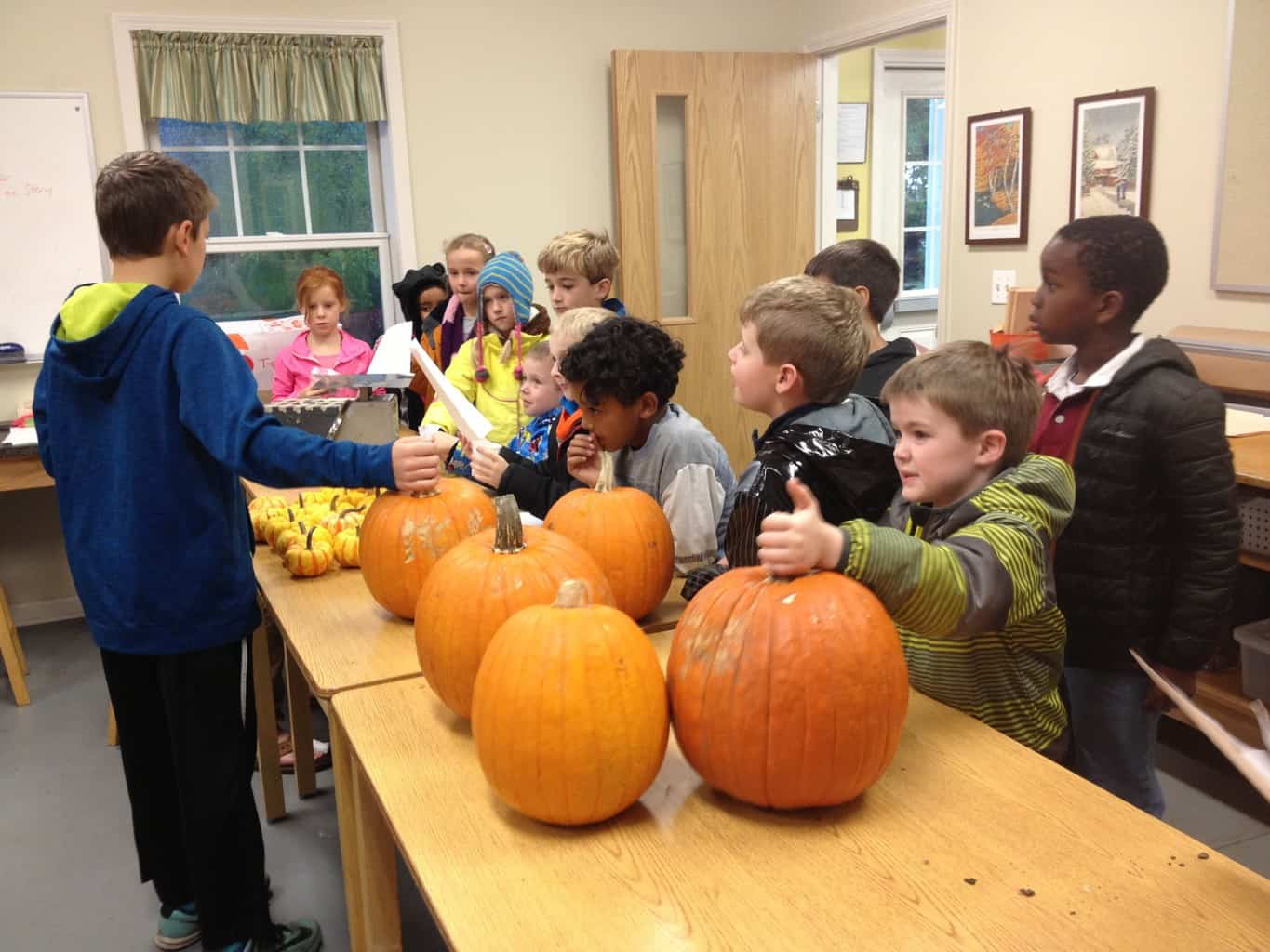 Lower Elementary at the Blue House: Pumpkin Picking @ Blue House | Grayslake | Illinois | United States